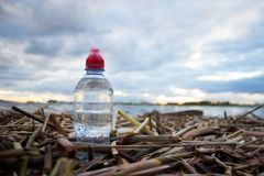Plastic water bottles pollute ocean. Bottle on the cost royalty free stock images