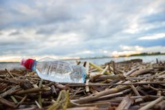 Plastic water bottles pollute ocean. Bottle on the cost royalty free stock photography