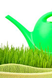 Plastic watering can and green grass Stock Photos