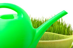 Plastic watering can and green grass isolated on white Royalty Free Stock Photography