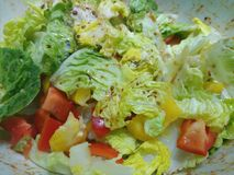 Crunchy organic homemade salad with a fresh dressing. In a plastic white bowl stock images