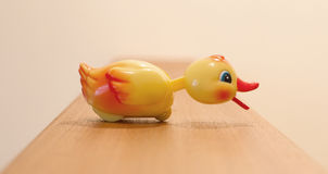 Plastic yellow duck, childrens toy. Isolated, selective focus Royalty Free Stock Images
