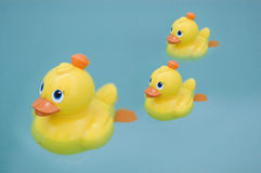 Plastic yellow duck toy. Still life photography Stock Images