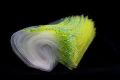 Plastic Zak Royalty-vrije Stock Foto's