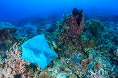 Plastic zak op koraalrif stock afbeelding