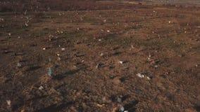Plastic zakken op het gazon stock footage