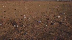 Plastic zakken op het gazon stock video