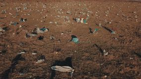 Plastic zakken op het gazon stock videobeelden