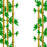 Plasticine bamboo background 3D sculpture isolated Stock Photo