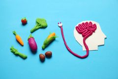 Plasticine figure of man and vegetarian food. Food for mind, charge of energy. Healthy lifestyle, detoxification and antioxidants stock photos