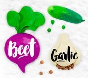 Plasticine vegetables beet Stock Photography
