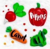 Plasticine vegetables carrot. Plasticine modeling vegetables carrot pepper salad radish cobbled together on a white plasticine background Stock Image