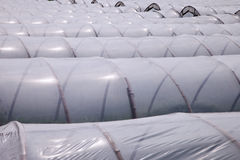 Plastics film greenhouses Stock Photography
