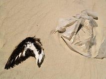 Plastiek in het overzees en op het strand, de grootste vijand van de vogels Stock Foto's