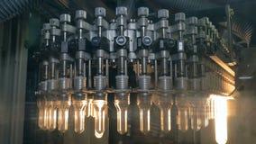 Plastiek, HUISDIERENflessen die zich op een transportband bij een plastic fabriek van de flessenproductie bewegen stock video
