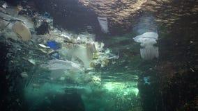 Plastikabfall und anderer Rückstand, die unter Wasser schwimmt Und tote Fische Plastikrückstand im Wasser, wild lebende Tiere töt stock video