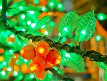 Plastikblätter mit innerem Licht Lizenzfreie Stockfotos