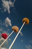 Plastikblume auf dem Pol. Lizenzfreie Stockbilder