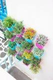 Plastikblumen mit buntem Plastikvase Lizenzfreies Stockbild