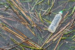 Plastikflasche im stehenden Gewässer des Sees Lizenzfreie Stockfotografie