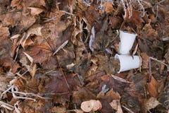 Plastikgläser aus den Grund Lizenzfreie Stockbilder