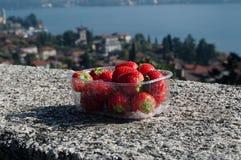 Plastikkasten frische Erdbeeren Geschossen am sonnigen Sommertag, See Como stockbilder