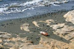 Plastikowa butelka na plaży obraz stock