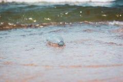 Plastikowa butelka w ocean wodzie, śmieci dennego pojęcie wizerunek obraz royalty free