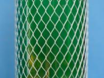 Plastikowa fishnet ochrona zdjęcie stock