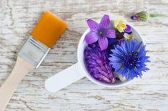 Plastikowa miarka z różnorodnymi pole kwiatami i kosmetyk szczotkujemy Składniki naturalny kosmetyk Obrazy Royalty Free