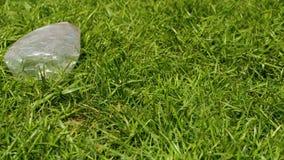 Plastikowe butelki zanieczyszczają gazon zbiory wideo