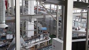 Plastikowi bidony na konwejerze lub rozlewniczej maszynie zdjęcie wideo