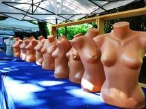 Plastikowi mannequins dla ubrań kobiety obrazy royalty free