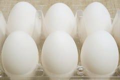 plastikowi zbiorników jajka Zdjęcie Stock