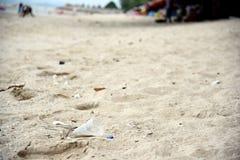 Plastikowy śmieci Na plaży Pojęcie światowi problemy zanieczyszczenie środowiska i ekologia Plażowy śmieci obraz stock