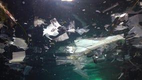Plastikowy śmieciarski i inny gruzów unosić się podwodny Morski zanieczyszczenie Plastikowi gruzy w wodzie, zabija przyrody zdjęcie wideo