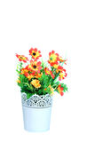 Plastikowy kwiat Obrazy Stock