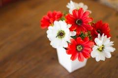 Plastikowy kwiat Obrazy Royalty Free