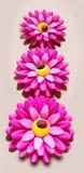 Plastikowy kwiat Obraz Stock