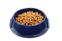 Zwierzęcia domowego jedzenie Obrazy Royalty Free