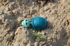 Plastikspielzeugschildkröte verlor durch ein Kind (horizontale Form) Lizenzfreie Stockbilder