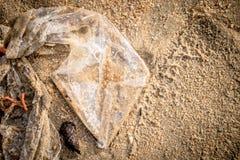 Plastiktascheverschmutzungsabf?lle auf dem Strand lizenzfreie stockfotografie