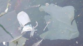 Plastpåsar och annan förorena avfalls som svävar i havet lager videofilmer