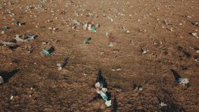 Plastpåsar på gräsmattan stock video