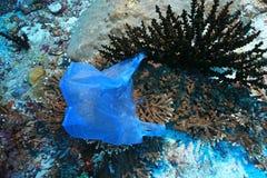 Plastpåse på koraller arkivbild