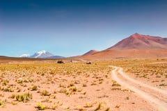 Platå Altiplano, Bolivia Arkivbilder