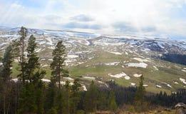 Platå på det västra Kaukasuset Lago-Naki arkivfoton
