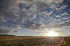 Platô de Qinghai - de Tibet fotografia de stock royalty free