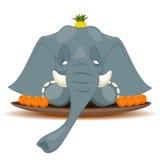 Plat avec l'éléphant pour terriblement affamé Photo libre de droits