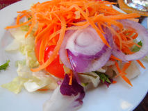 Plat avec la salade mixte Photographie stock